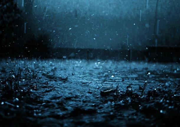 Дождь, сильный ветер и потепление ожидаются в Курской области